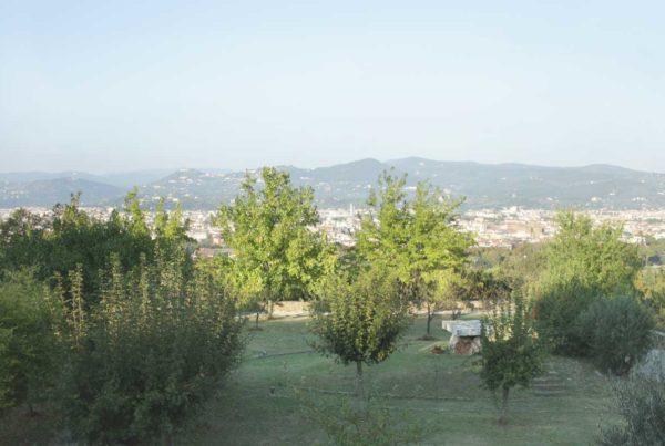 Foto del giardino - festa di San Giovanni al Monte alle Croci